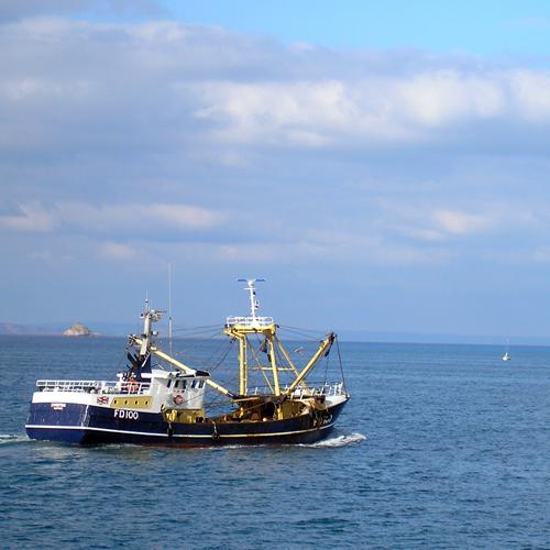 Beam Trawler