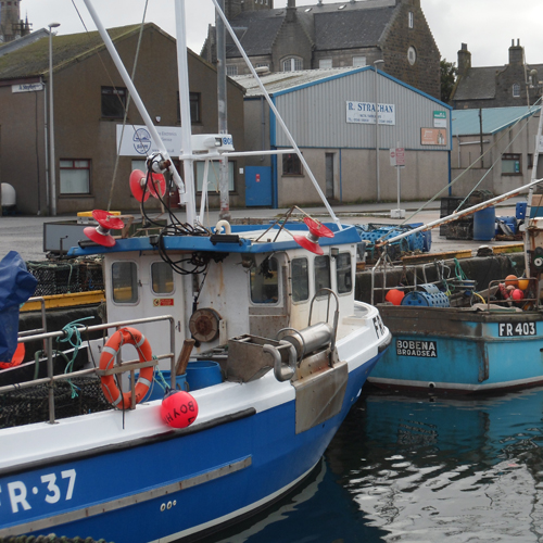 Fraserburgh Creel Boats