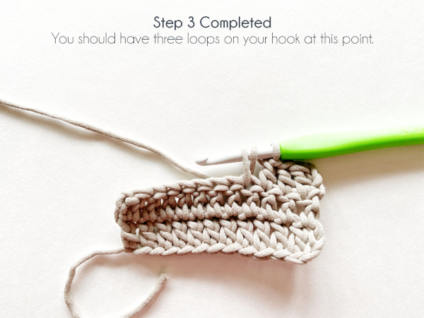 "A swatch of double crochet in taupe color shows a hook with a working loop and a yarn over after having pulled up a loop, for a total of three loops on the hook. Text on the photo reads: ""Step 3 Completed. You should have three loops on your hook at this point."""
