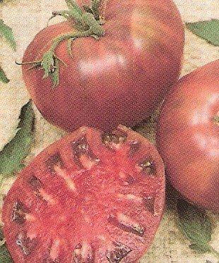 Tomato: Cherokee Purple