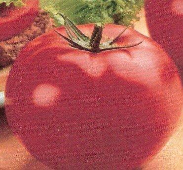 Tomato: Parks Whopper