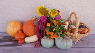yellow sunflower and orange pumpkins on white wooden table