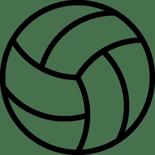 Club de Volleyball de la Roche sur Yon