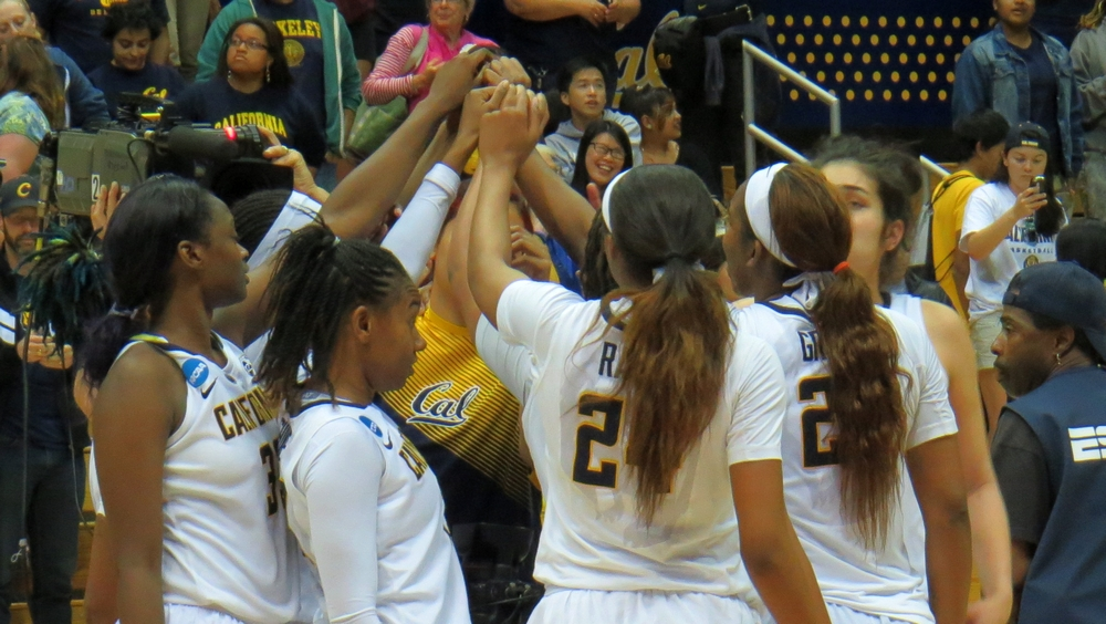 Cal keeps Wichita State at bay, advances to second round of NCAAs to face Texas