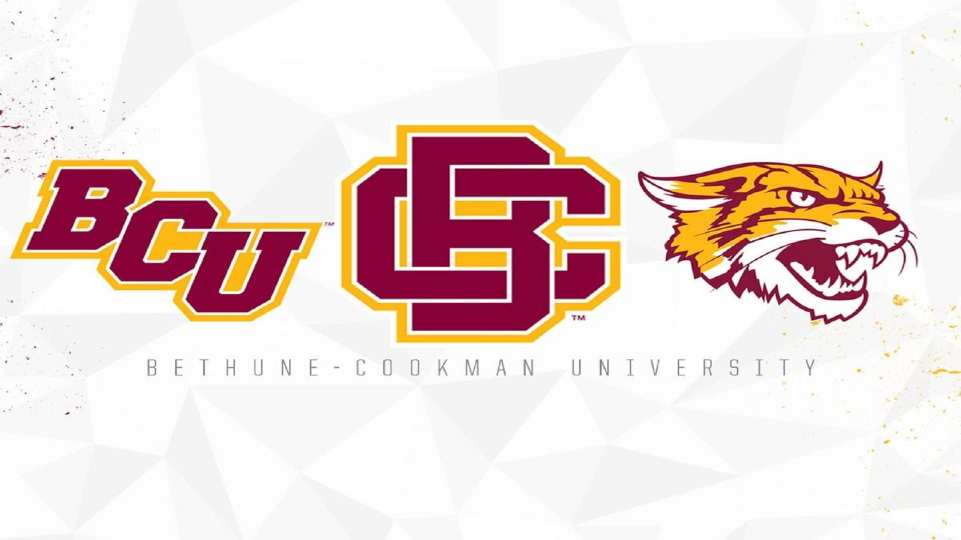 Bethune-Cookman University cancels all sports for 2020-21 due to COVID-19
