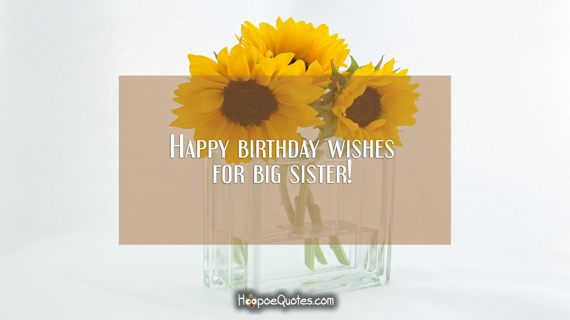 Happy Birthday Wishes For Big Sister Hoopoequotes