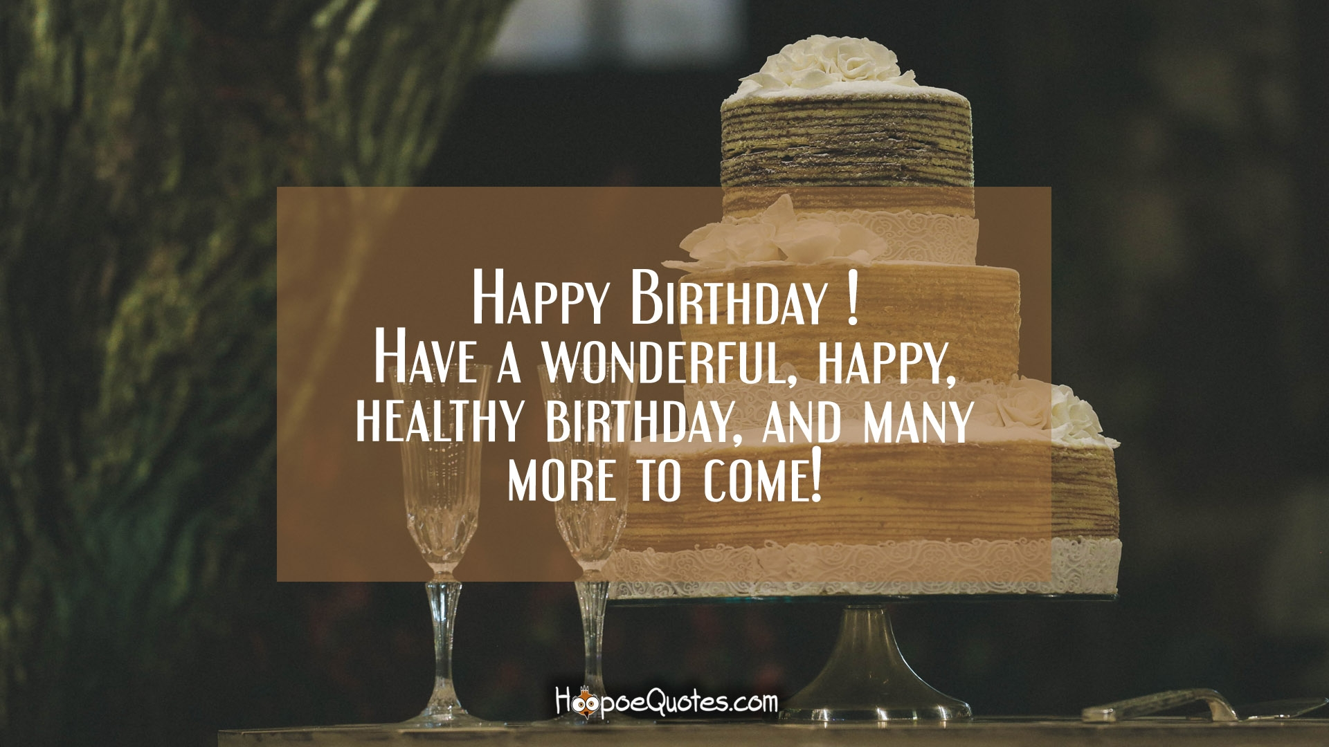 Happy Birthday Have A Wonderful Happy Healthy Birthday And Many More To Come HoopoeQuotes