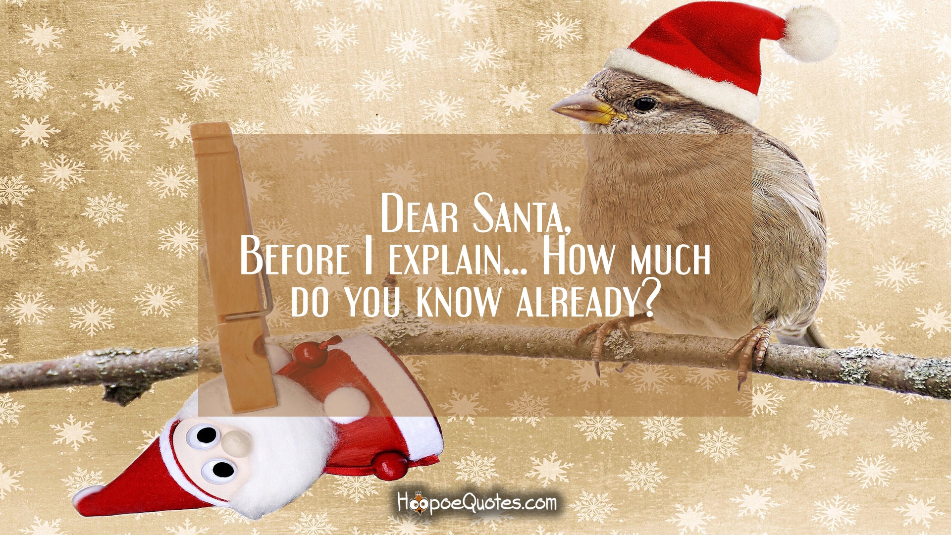Dear Santa Before I Explain How Much Do You Know
