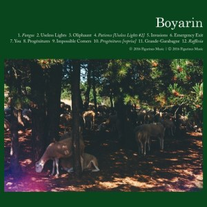 boyarin Les sorties d'albums pop, rock, electro... du 8 avril 2016