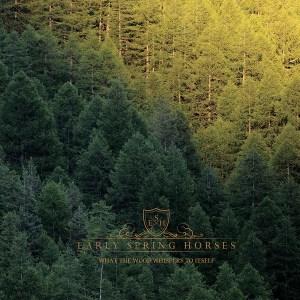 Early-SpringHorses-album-2016 Les sorties d'albums pop, rock, electro du 18 novembre 2016