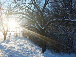 Sonnenlicht im Schnee - Ängste zulassen, Hoffnung schöpfen