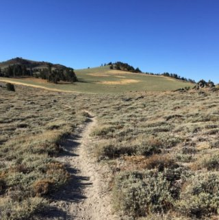 Tahoe Rim Trail–Day 10