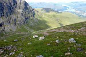 Steep hillside