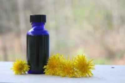 How to make a fresh dandelion infused oil