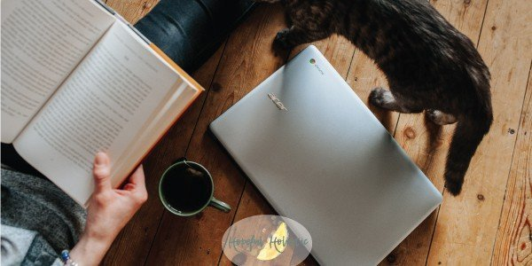 Person reading with a cup of tea and cat