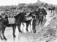 WW1-Archives-Canada---Pack-