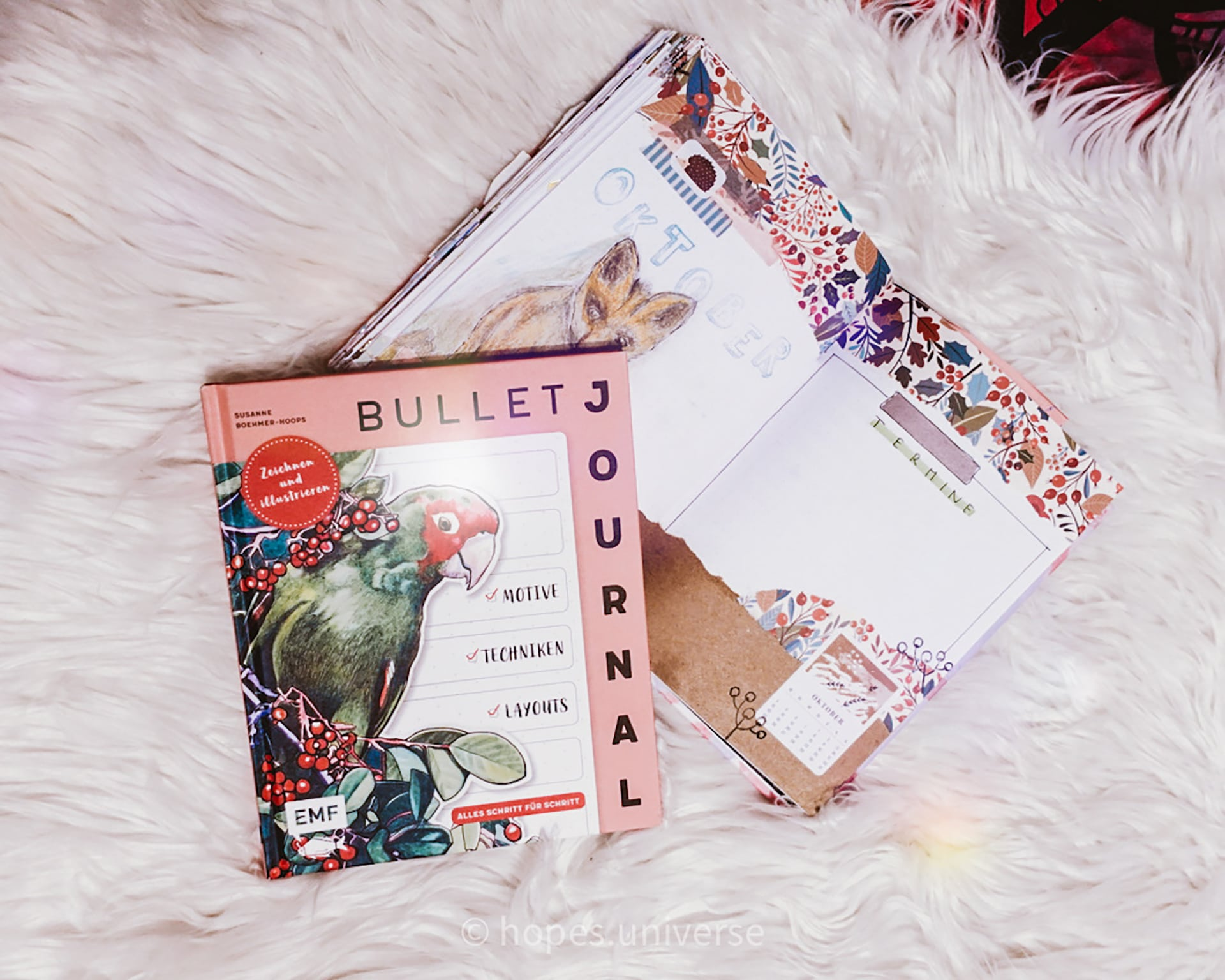 REVIEW ~ Bullet Journal Zeichnen und Illustrieren