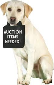auction-items-needed