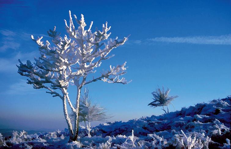 RKM_Winter-Icing