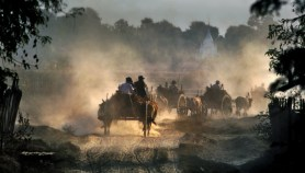 Burmese Wagon Train copy