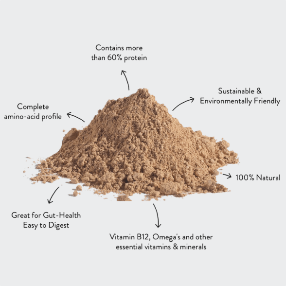 Cricket Powder (Sample)