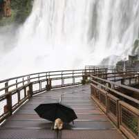 Image result for HD ARGENTINEAN SIDE OF THE FALLS