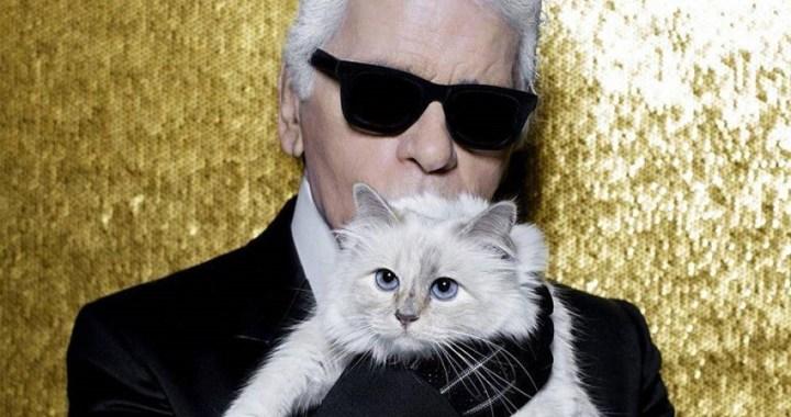 El gato de Karl Lagerfeld heredará parte de su fortuna de 170 millones de euros