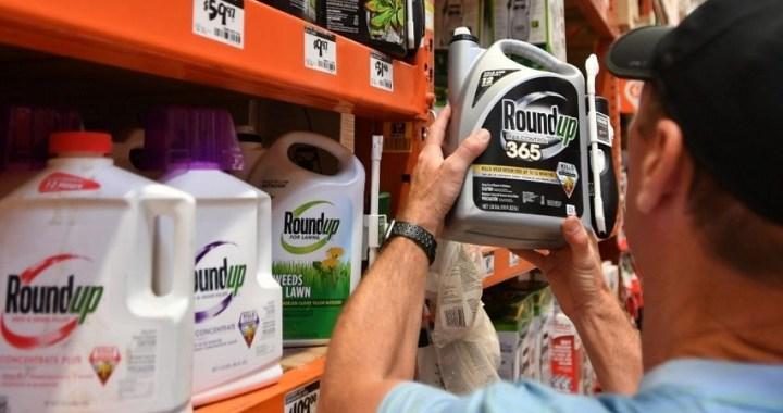 Monsanto sentenciado a pagar 1.800 millones de euros a una pareja estadounidense enferma de cancer