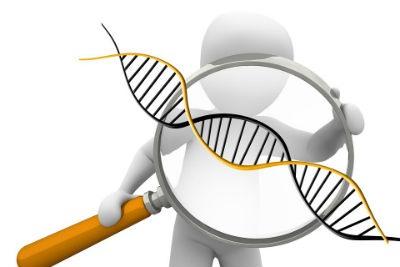 Prueba de ADN para saber tu origen