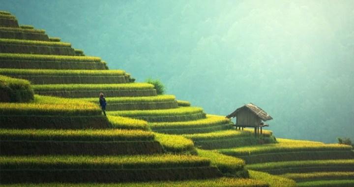 Asia, el continente más exótico