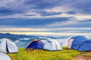 Campamentos de verano: el mejor momento para reservar, tipos y ventajas de ir