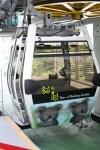 台北自由行(下) – 西門町﹐中正紀念堂﹐信義﹐貓空