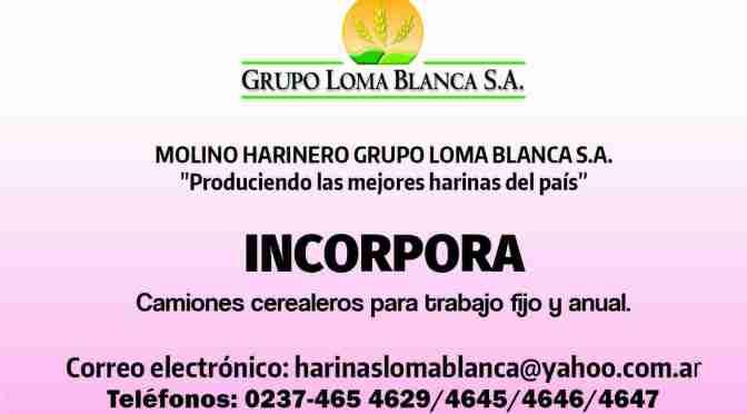 Molino harinero grupo «loma Blanca» CAMIONES CEREALEROS