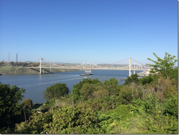Carquinez Bridge From Vista Point (3)