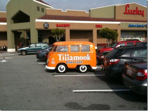 Mini Tillamook