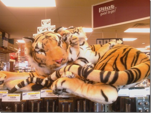 truck stop tiger