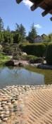 Pond in the meditation garden