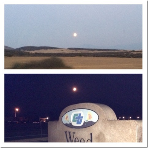 Moonrise at Weed