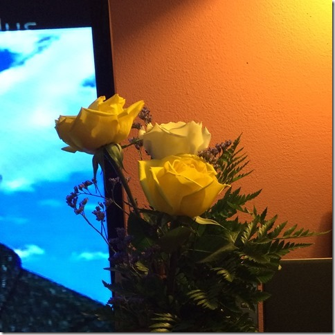 Yellow Roses (2)