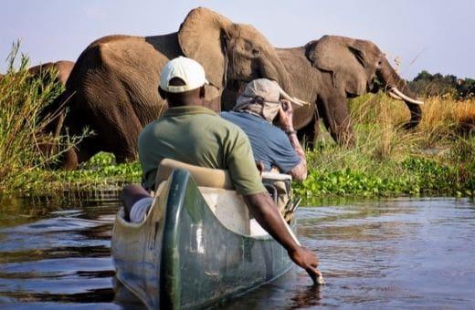 Safari au Zimbabwe en canoë authentique aventure