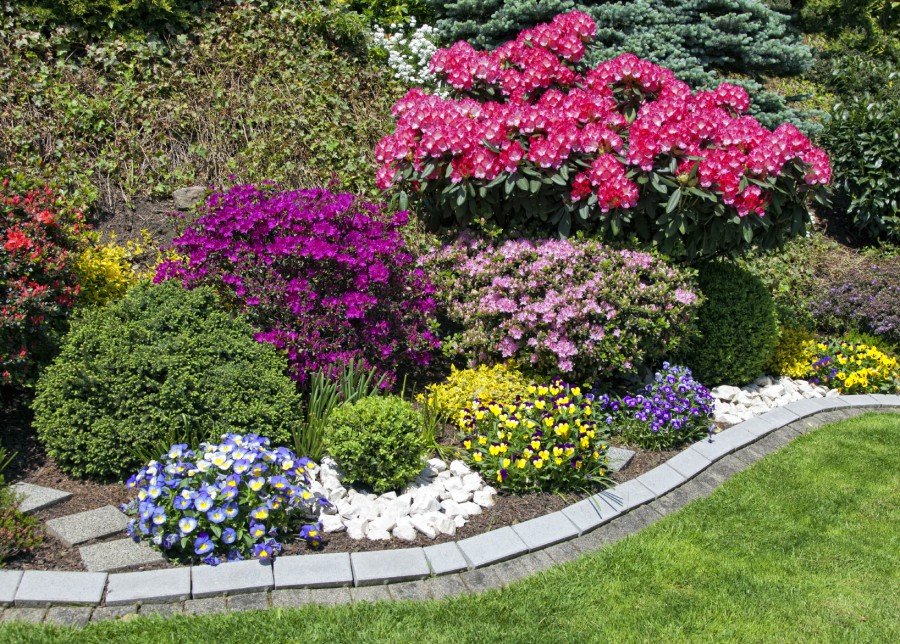 Image result for Landscaping Services istock