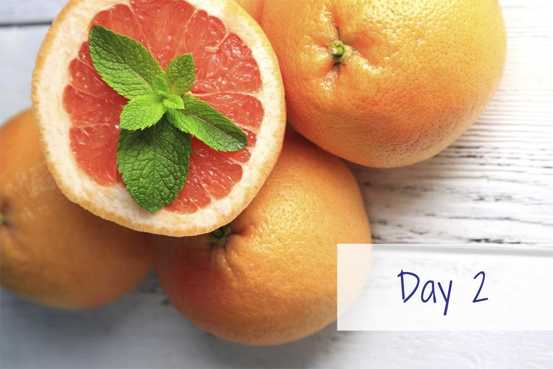 Grape fruit HCG recipe plan