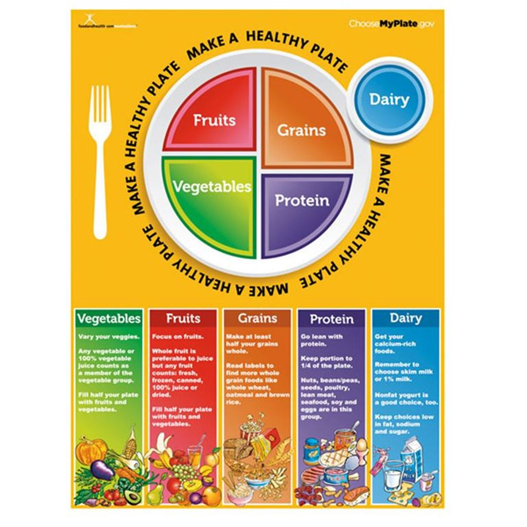 Myplate Food Pyramid Worksheet