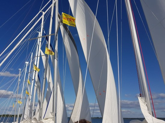 obozy żeglarskie HORN (1)
