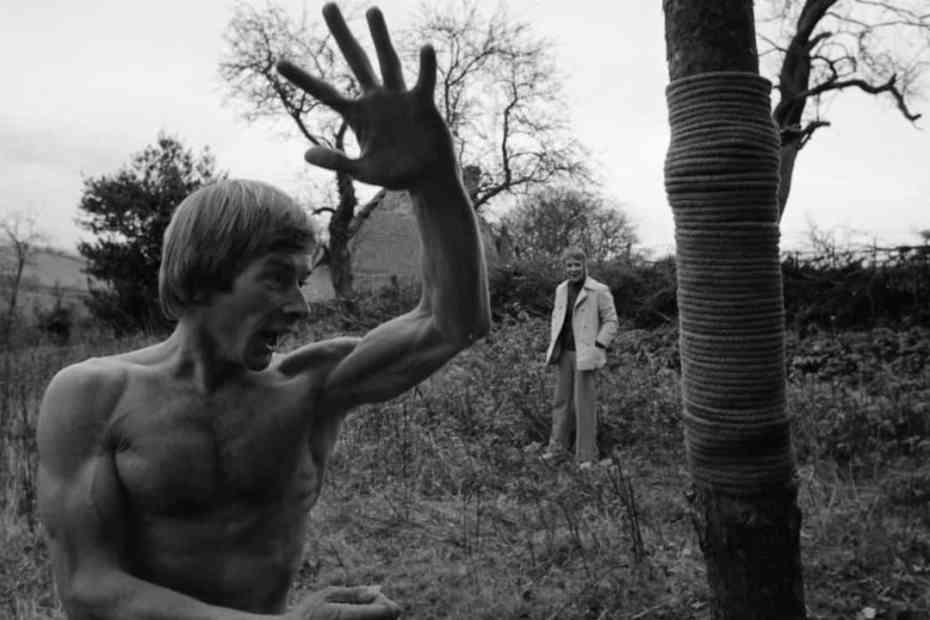 robin redbreast 1970