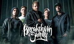 breakdownofsanity