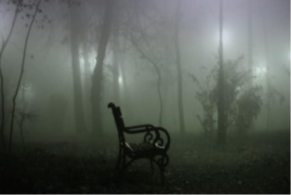 Considering The Allure of Horror Films   Horror Movie   Horror Homeroom