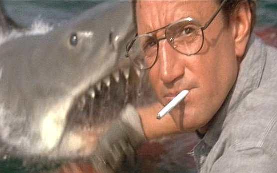 Jaws, eye, Brody