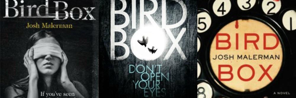 Birdbox Collage