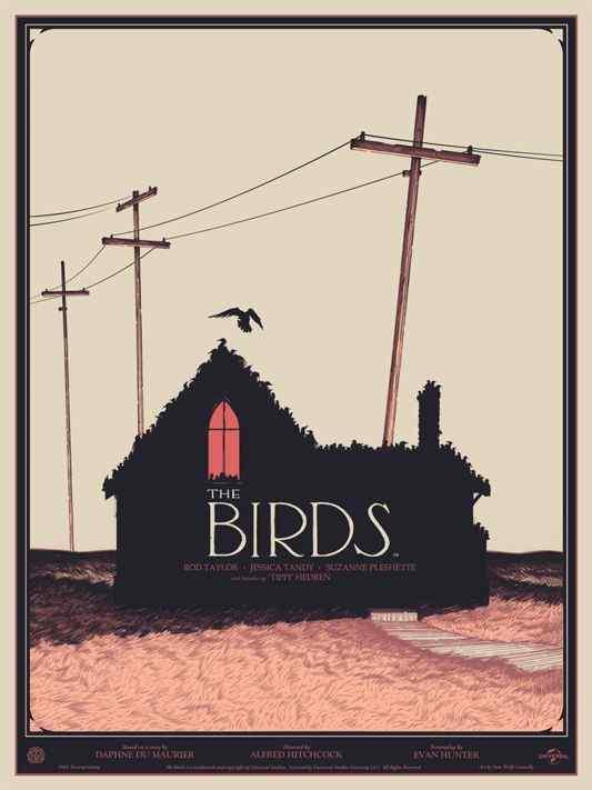Mondo the birds